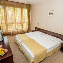 Отель Snezhanka Болгария, Пампорово - отзывы, цены и фото номеров - забронировать отель Snezhanka онлайн комната для гостей фото 4