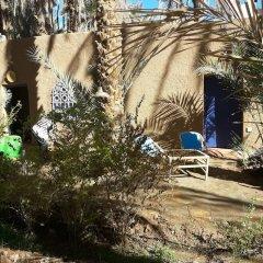 Отель Riad Tagmadart Ferme D'hôte Марокко, Загора - отзывы, цены и фото номеров - забронировать отель Riad Tagmadart Ferme D'hôte онлайн фото 20