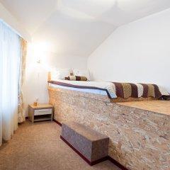 Отель Garni Hotel Villa Family Сербия, Белград - отзывы, цены и фото номеров - забронировать отель Garni Hotel Villa Family онлайн спа