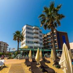 Honeymoon Hotel Турция, Мармарис - отзывы, цены и фото номеров - забронировать отель Honeymoon Hotel онлайн с домашними животными
