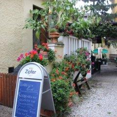 Отель Gasthaus zum Brandtner Австрия, Вена - отзывы, цены и фото номеров - забронировать отель Gasthaus zum Brandtner онлайн