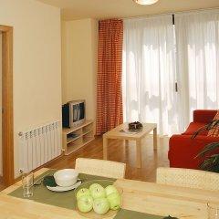 Отель Aparthotel Nou Vielha Испания, Вьельа Э Михаран - отзывы, цены и фото номеров - забронировать отель Aparthotel Nou Vielha онлайн комната для гостей фото 3