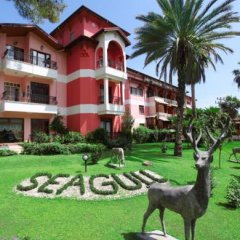 Seagull Hotel фото 7