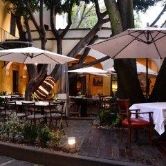 Отель Suites Los Camilos - Adults Only Мексика, Мехико - отзывы, цены и фото номеров - забронировать отель Suites Los Camilos - Adults Only онлайн гостиничный бар