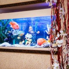 Гостиница Аврора удобства в номере фото 2