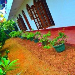 Отель Chaya Villa Guest House Шри-Ланка, Берувела - отзывы, цены и фото номеров - забронировать отель Chaya Villa Guest House онлайн