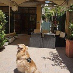 Отель Happy Римини с домашними животными