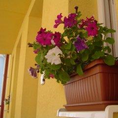Отель Orel Residence Венгрия, Хевиз - отзывы, цены и фото номеров - забронировать отель Orel Residence онлайн интерьер отеля