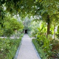 Отель Le Jardin Des Biehn Марокко, Фес - отзывы, цены и фото номеров - забронировать отель Le Jardin Des Biehn онлайн фото 21