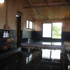 Отель Hakuba Alpine Hotel Япония, Хакуба - отзывы, цены и фото номеров - забронировать отель Hakuba Alpine Hotel онлайн бассейн