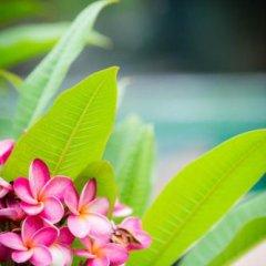 Отель Lanta Scenic Bungalow Таиланд, Ланта - отзывы, цены и фото номеров - забронировать отель Lanta Scenic Bungalow онлайн фото 17