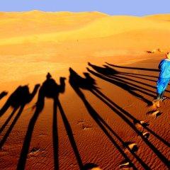 Отель Гостевой дом La Vallée des Dunes Марокко, Мерзуга - отзывы, цены и фото номеров - забронировать отель Гостевой дом La Vallée des Dunes онлайн фото 4