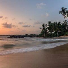 Отель Paradise Holiday Village Шри-Ланка, Негомбо - отзывы, цены и фото номеров - забронировать отель Paradise Holiday Village онлайн фото 20