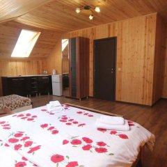 Мини-отель Папайя Парк Стандартный номер с различными типами кроватей фото 15