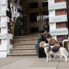 Milestone Hotel Kensington с домашними животными