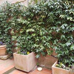 Отель Casa Bardi Италия, Сан-Джиминьяно - отзывы, цены и фото номеров - забронировать отель Casa Bardi онлайн фото 8