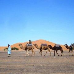 Отель Dar Poublanc Марокко, Мерзуга - отзывы, цены и фото номеров - забронировать отель Dar Poublanc онлайн развлечения