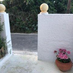 Отель Koukounari 2 Rooms Греция, Агистри - отзывы, цены и фото номеров - забронировать отель Koukounari 2 Rooms онлайн фото 6