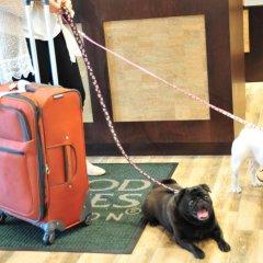 Отель Homewood Suites by Hilton Hamilton, NJ интерьер отеля фото 3