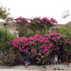 Отель Studios Marianna Греция, Эгина - отзывы, цены и фото номеров - забронировать отель Studios Marianna онлайн фото 5
