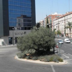 Отель Dormavalencia Hostel Испания, Валенсия - отзывы, цены и фото номеров - забронировать отель Dormavalencia Hostel онлайн