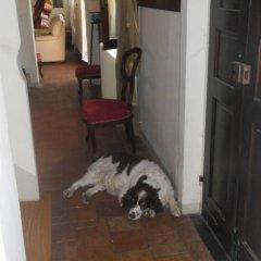 Отель Ca' Norino B&B Кандия-Ломеллина с домашними животными