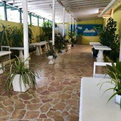 Отель Sunflower Villas Ямайка, Ранавей-Бей - отзывы, цены и фото номеров - забронировать отель Sunflower Villas онлайн