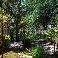 Отель Tur Sinai Organic Farm Resort Иерусалим приотельная территория фото 2