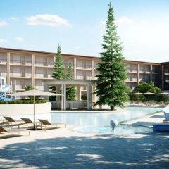 Отель Azurro Болгария, Солнечный берег - отзывы, цены и фото номеров - забронировать отель Azurro онлайн бассейн фото 3