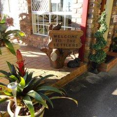 Отель Alstonville Settlers Motel с домашними животными