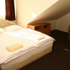 Отель Pension Groll Чехия, Пльзень - отзывы, цены и фото номеров - забронировать отель Pension Groll онлайн комната для гостей фото 3