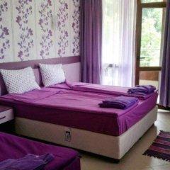 Отель Family Hotel Enica Болгария, Тетевен - отзывы, цены и фото номеров - забронировать отель Family Hotel Enica онлайн фото 25