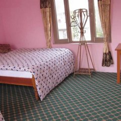 Отель Lotus Inn Непал, Покхара - отзывы, цены и фото номеров - забронировать отель Lotus Inn онлайн комната для гостей фото 4