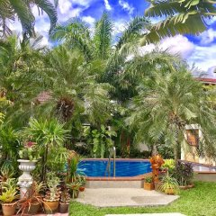 Отель Falang Paradise бассейн фото 2