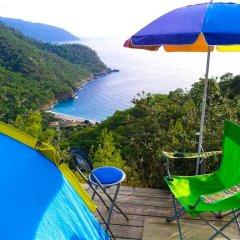 Full Moon Camp Турция, Кабак - отзывы, цены и фото номеров - забронировать отель Full Moon Camp онлайн бассейн