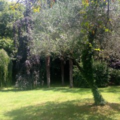 Отель Villa Abbamer Италия, Гроттаферрата - отзывы, цены и фото номеров - забронировать отель Villa Abbamer онлайн фото 18