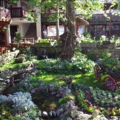 Отель Izvora Болгария, Кранево - отзывы, цены и фото номеров - забронировать отель Izvora онлайн фото 8
