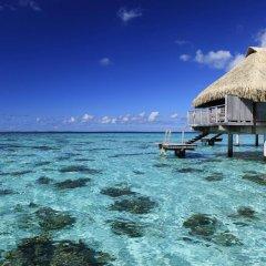 Отель Hilton Moorea Lagoon Resort and Spa фото 4