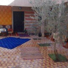 Отель Camels House Марокко, Мерзуга - отзывы, цены и фото номеров - забронировать отель Camels House онлайн бассейн фото 2