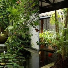 Отель Club Villa Шри-Ланка, Бентота - отзывы, цены и фото номеров - забронировать отель Club Villa онлайн фото 4