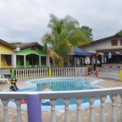 Отель Rainbow Village Гондурас, Луизиана Ceiba - отзывы, цены и фото номеров - забронировать отель Rainbow Village онлайн бассейн