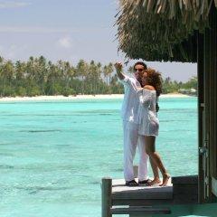Отель Sofitel Moorea la Ora Beach Resort Французская Полинезия, Папеэте - 1 отзыв об отеле, цены и фото номеров - забронировать отель Sofitel Moorea la Ora Beach Resort онлайн помещение для мероприятий фото 2