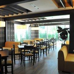 Отель Sokrat Албания, Тирана - отзывы, цены и фото номеров - забронировать отель Sokrat онлайн гостиничный бар