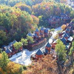 Отель KOREA QUALITY Elf Spa Resort Hotel Южная Корея, Пхёнчан - отзывы, цены и фото номеров - забронировать отель KOREA QUALITY Elf Spa Resort Hotel онлайн фото 6