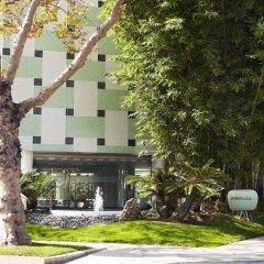 Отель Avalon Hotel Beverly Hills США, Беверли Хиллс - отзывы, цены и фото номеров - забронировать отель Avalon Hotel Beverly Hills онлайн фото 5
