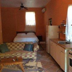 Отель Pura Vida Jamaica Ямайка, Фалмут - отзывы, цены и фото номеров - забронировать отель Pura Vida Jamaica онлайн в номере фото 2