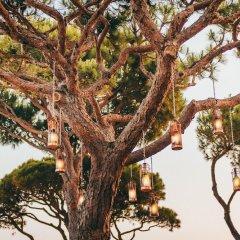 Отель Pine Cliffs Resort Португалия, Албуфейра - отзывы, цены и фото номеров - забронировать отель Pine Cliffs Resort онлайн развлечения