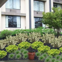 Отель Crowne Plaza Cleveland South-Independence фото 11