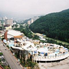 Отель Phoenix Pyeongchang Hotel Южная Корея, Пхёнчан - отзывы, цены и фото номеров - забронировать отель Phoenix Pyeongchang Hotel онлайн городской автобус