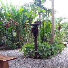 Отель Cabinas Tropicales Puerto Jimenez Ринкон фото 7